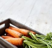 Fresh raw carrots with leaves in a box. Fresh raw carrots with leaves on a wooden table Stock Photography