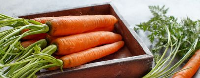 Fresh raw carrots with leaves in a box. Fresh raw carrots with leaves on a wooden table Royalty Free Stock Photography
