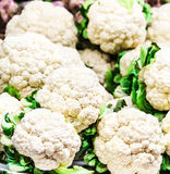 Fresh raw cauliflower on market close up. Cauliflower  background. Food background Stock Images
