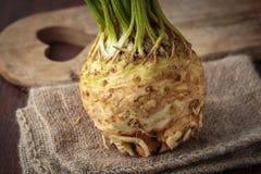Fresh raw celeriec. Fresh raw celeriac for an healthy nutrition Stock Photography