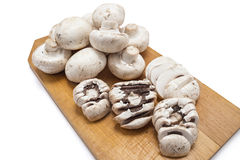 Fresh raw champignons Royalty Free Stock Image