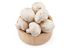 Fresh raw champignons Royalty Free Stock Photos