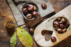 Fresh raw chestnuts Stock Photos