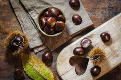 Fresh raw chestnuts. Fruits in autumn season Royalty Free Stock Photo