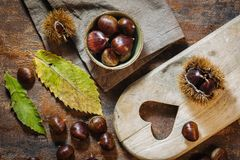 Fresh raw chestnuts. Fruits in autumn season Royalty Free Stock Images