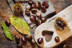 Fresh raw chestnuts Stock Photography