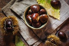 Fresh raw chestnuts. Fruits in autumn season Stock Photo
