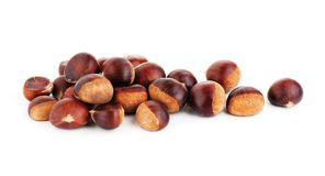 Fresh raw chestnuts. On the white background Royalty Free Stock Photo