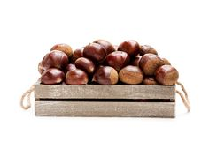Fresh  raw chestnuts  in a wooden box isolated on white backgroun. Fresh  raw chestnuts in a wooden box isolated on white background Stock Photo