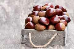 Fresh  raw chestnuts in a wooden box on wooden background. Fresh  raw chestnuts in a  wooden box on wooden background Stock Photos