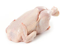 Fresh raw chicken. On white background Royalty Free Stock Photos