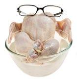Fresh raw chicken Stock Image