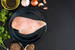 Fresh raw chicken breast fillet Stock Photography