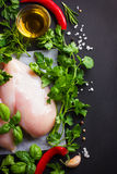 Fresh raw chicken breast,  spices and herbs Stock Photos