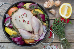 Fresh raw chicken for cooking with vegetables. Fresh raw chicken for cooking with red onions, apples and lemon Royalty Free Stock Images