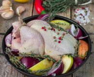 Fresh raw chicken for cooking with vegetables. Fresh raw chicken for cooking with red onions, apples and lemon Stock Images