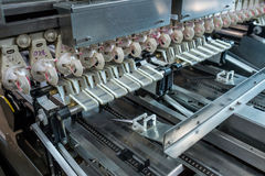 Fresh raw chicken and eggs on the conveyor belt. Fresh and raw chicken eggs on a conveyor belt, being moved to the packing house Royalty Free Stock Photo