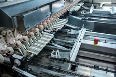 Fresh raw chicken and eggs on the conveyor belt. Fresh and raw chicken eggs on a conveyor belt, being moved to the packing house Stock Images