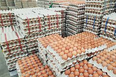 Fresh raw chicken eggs in package for sale. In supermarket Stock Photo