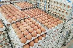Fresh raw chicken eggs in package for sale. In supermarket Stock Images