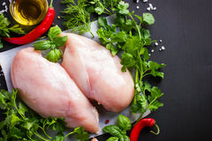 Fresh raw chicken fillet,  spices and herbs Royalty Free Stock Photos