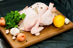 Fresh raw chicken. Whole raw chicken on a cutting board with vegetables and herbs Royalty Free Stock Images