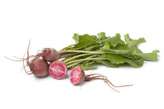 Fresh raw Chioggia beets Stock Photo