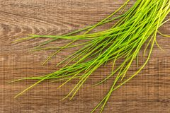 Fresh raw chives on brown wood. Fresh chives table top isolated on brown wood background grass slender leaves Stock Photos