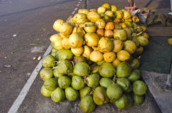 Fresh raw coconuts  on street asphalt in South India Royalty Free Stock Photography
