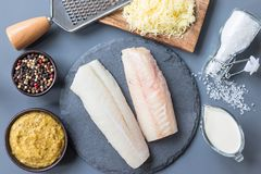 Fresh raw cod fillet with ingredients, pepper, salt, mustard, cr. Eam and cheese on a stone plate, horizontal, top view stock image