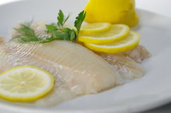 Fresh raw cod fish fillet. On a plate with parsley and lemon Stock Photography