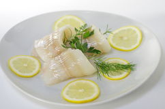 Fresh raw cod fish fillet. On a plate with parsley and lemon Royalty Free Stock Photos