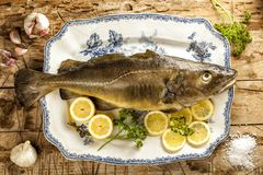 Fresh raw cod served on a tray with ingredients for recipe. Fresh raw cod on a ceramic dish with lemon, garlic and parsley Royalty Free Stock Photos