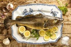 Fresh raw cod on a vintage ceramic tray. Fresh raw cod on a ceramic dish with lemon, garlic and parsley Stock Image