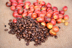 Fresh raw coffee beans. Close up of fresh raw coffee beans on texture background, selective focus Stock Photo