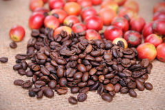 Fresh raw coffee beans. Close up of fresh raw coffee beans on texture background, selective focus Royalty Free Stock Images
