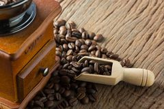 Fresh Raw Coffee Beans on Wooden Desk Table. Stack of Fresh Raw Coffee Beans on Wooden Desk Table with Wooden Spoon and Coffee Grinder as Refresh Beverages Stock Photo