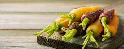 Fresh raw colorful carrots roots. Purple, yellow and orange on old wooden table. Healthy food vegetable background with copy space. Banner Royalty Free Stock Image