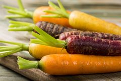 Fresh raw colorful carrots roots. Purple, yellow and orange on old wooden table. Healthy food vegetable background Royalty Free Stock Image