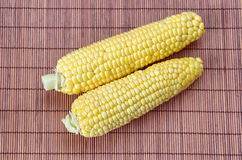 Fresh raw corn on the cob. Two ripe ear of corn on a bamboo napkin Royalty Free Stock Photography