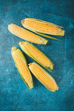 Fresh raw corn cobs. On blue concrete background Stock Photo