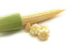 Fresh raw corn cobs isolated. On the white background Royalty Free Stock Photography