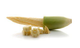 Fresh raw corn cobs isolated. On the white background Royalty Free Stock Photos