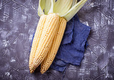 Fresh raw corn on concrete table. Selective focus Royalty Free Stock Photos