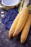 Fresh raw corn on concrete table. Selective focus Stock Photos