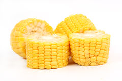 Fresh raw corn. Isolated on the white background Royalty Free Stock Photo