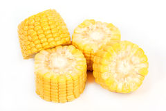 Fresh raw corn. Isolated on the white background Royalty Free Stock Image