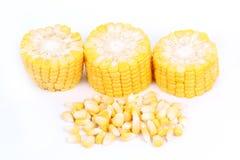 Fresh raw corn. Isolated on the white background Stock Photo