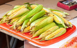 Fresh raw corn ready to sale at the market. Fresh raw corn ready to sale at the farmers market Royalty Free Stock Photo