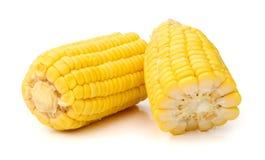 Fresh raw corn on white background. isolated. Sweet corn isolated on white background Stock Photo